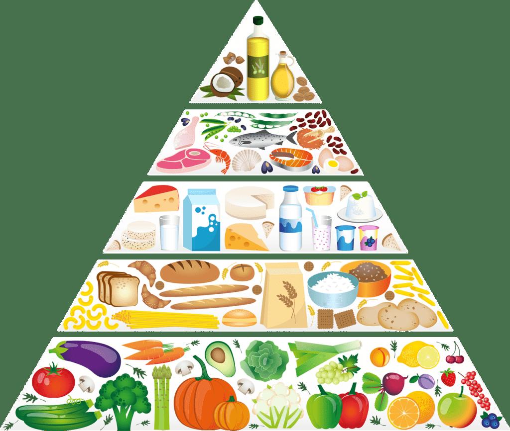 Piramida żywienia alternatywą dla zdrowia! Stop otyłości brzusznej!